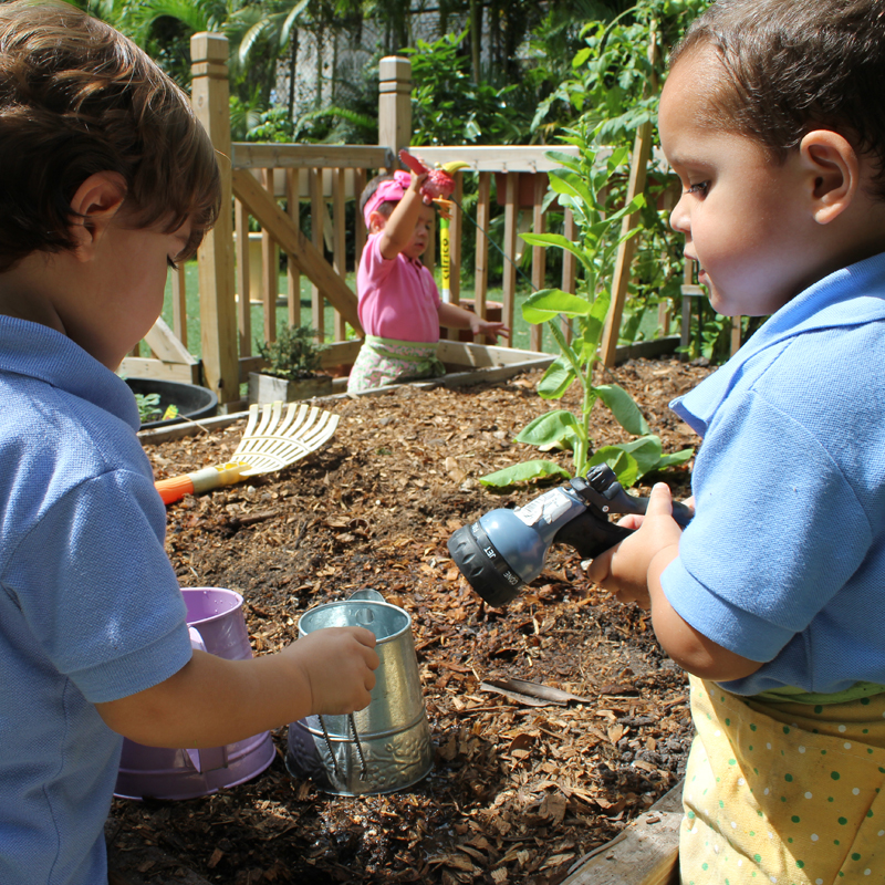 Child Cared for Garden